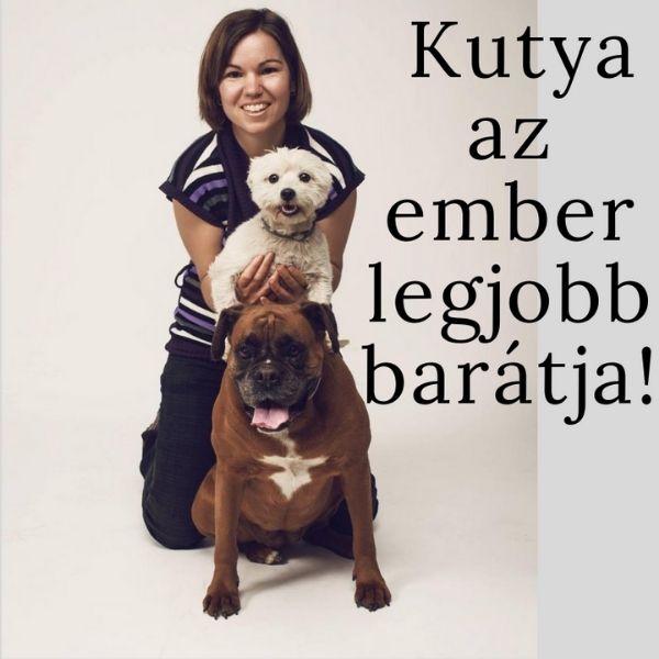 Kutyalélek terápia